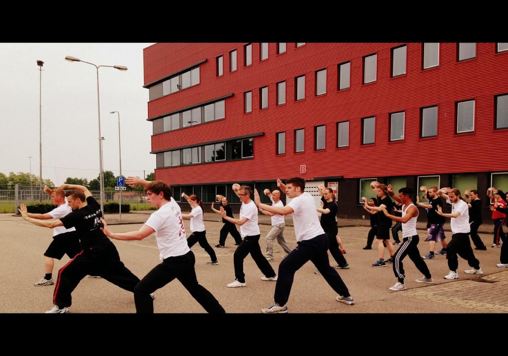 Shaolin-Kung-Fu-Den-Bosch-Chi-Academy